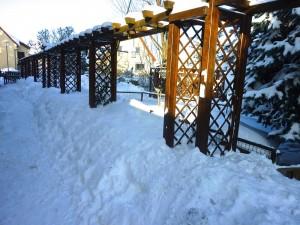 Auch im Winter ist es hier interessant, alles kein Hindernis für einen Airedale!