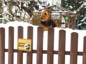 Aber gewartet wird auch im Winter, schön oben auf den Schneebergen, da hat man eine noch bessere Übersicht.