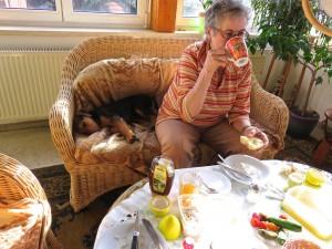 Und hier lernen die Kleinen auch schon - in der Wohnung zu sein, beim Frühstücken nicht stören (da gibt es nichts), dann sind sie auch wieder gern draussen - also überall, und auch mal (zunächst für kurze Zeit) allein.