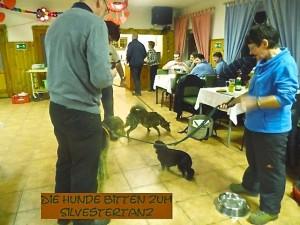 Zur Silvesterfeier, im Klubraum, Hundefreunde und alle Hunderassen - hier der Hundetanz.