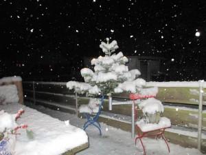 Genau, so stellt man sich Winter und Weihnachten mit Silvester vor. Ja, das gab es auch.