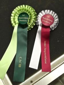 Hier sind die beiden Siegertrophäen von dieser Ausstellung - grosser Glückwunsch!