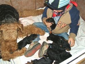 Hier habe ich noch ein Bild von Enkel Leon von früher - er war auch schon immer so ein Hundebegeisterter, und sitzt nun mitten im Wurf - als Mitglied!