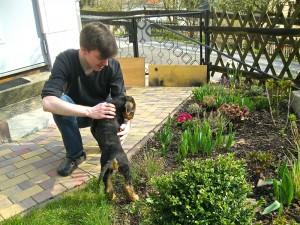 Ja, dem Hund gefallen die Blumen auch sehr - aber anders - erklär's mir !!