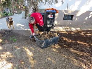 Danach ist Gartenarbeit angesagt. Noch nie war da jemand bei uns so schnell mit der Hilfe bereit, wie Ysco !