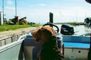 Wenn man nicht gerade am Strand ist, kann man Boot-Fahren, auch viel sehen, frische Luft - einfach herrlich.