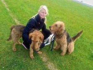 Links Wily, rechts Undine, in der Mitte eine weit angereiste Verwandte, die sich erst mal um die Hunde kümmert.