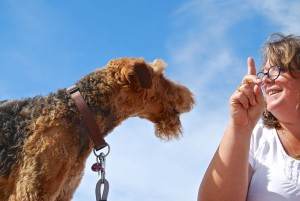 Da ist ja noch jemand, eine weitere Bewerbung für den Chefposten?? Mit dem spitzen Zeigefinger wird der Hund überzeugt (sonst bekommst Du...) !