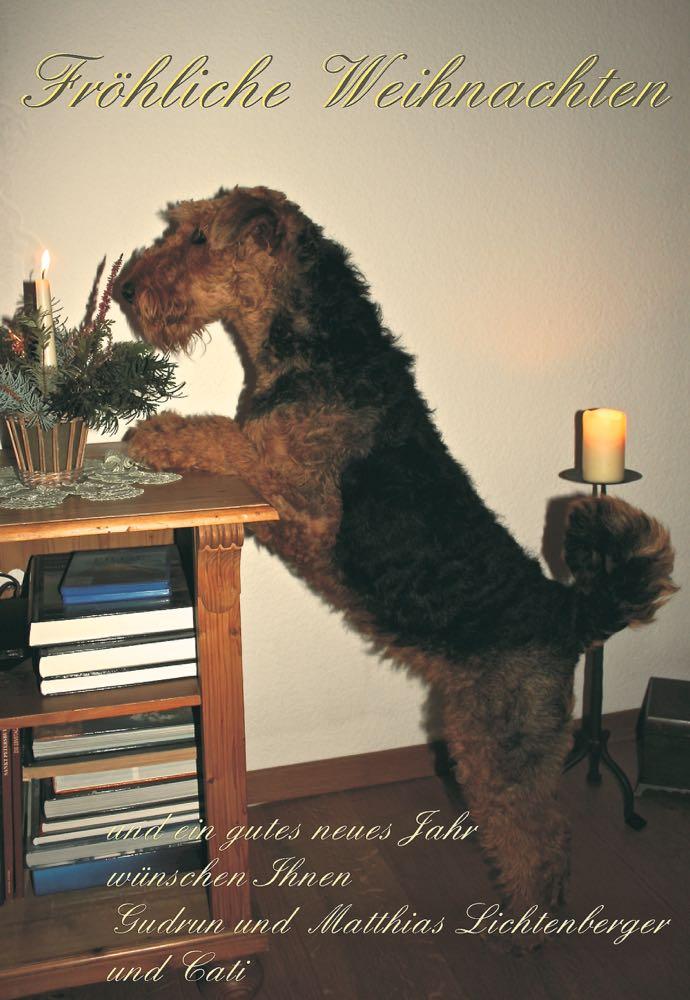 Cati aus Freiberg grüsst zu Weihnachten.