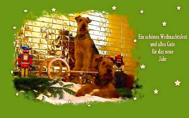Weihnachtsgrüsse von Ivo und Cliff aus Freital. Beide sind schon Weihnachtsprofi's-die Foto's klappen auf Anhieb.