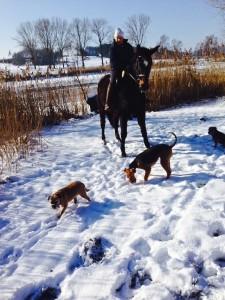 Und auch Ausritt in engerem Kreise, mit Herrchen oder Frauchen - einfach herrlich, auch beim ersten Schnee.