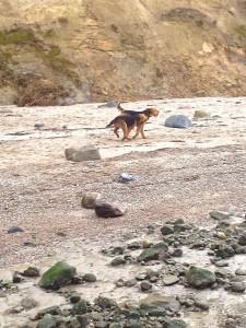 Und das Rennen am Strand . herrlich, bis man wieder fast trocken ist.