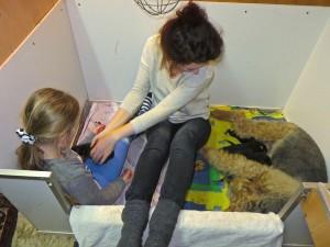 Die 2 Menschenmädchen und die Hundemutter haben es geschafft, sie sitzen oder liegen nebeneinander.