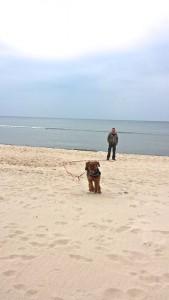 Wasser, Sand, keine Urlauber und ein Hund zwischen Herrchen und Frauchen - hin und her - sehr gut.