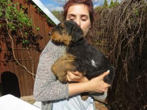 Toni hat sie auf dem Arm, die Nähe und Wärme lieben diese kleinen Tiere und sind ganz still (erst mal).