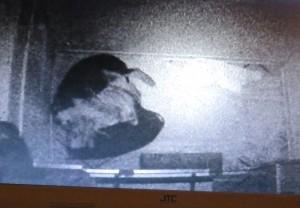 Und hier sind beide zusammen gerückt, Umarmung (Bildschirm neben unserem Fernseher !!!