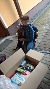 Herrlich, Paket geöffnet, alles für Zamira, junges Herrchen kommt von der Schule, wird begrüsst - hier ist was für mich!