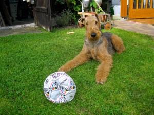 Unter Anderem - ein totaler Ball-Fan!