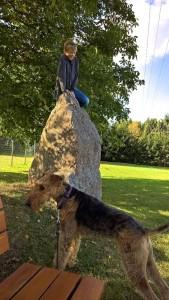 Oh, da hoch kommt der Hund nicht, oder er darf es nicht.