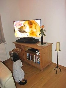 Der Hund ist krank, OP, Langeweile, den Kranken betreuen, aber Wie? Natürlich mit Fernsehen, das klappt!