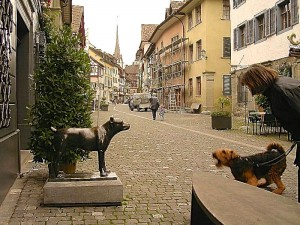 Jerry in der Schweiz - er liebt Menschen, Kinder usw. - aber was haben die hier in diesem Land für komische Wesen auf der Strasse stehen??