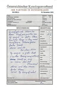 Der Richterbericht - Nessy's Vorzüge und Mängel, ein Lob für mich (Vorführung !!).