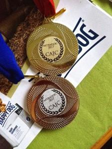 Die Ehrenmedaillen in Nitra, das sieht ja auch recht schmuck aus.