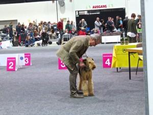 """Wir beide im Ring - etwas aufgeregt, Hund zunächst mit """"schlechte-Laune-Ohren, aber es wird!"""