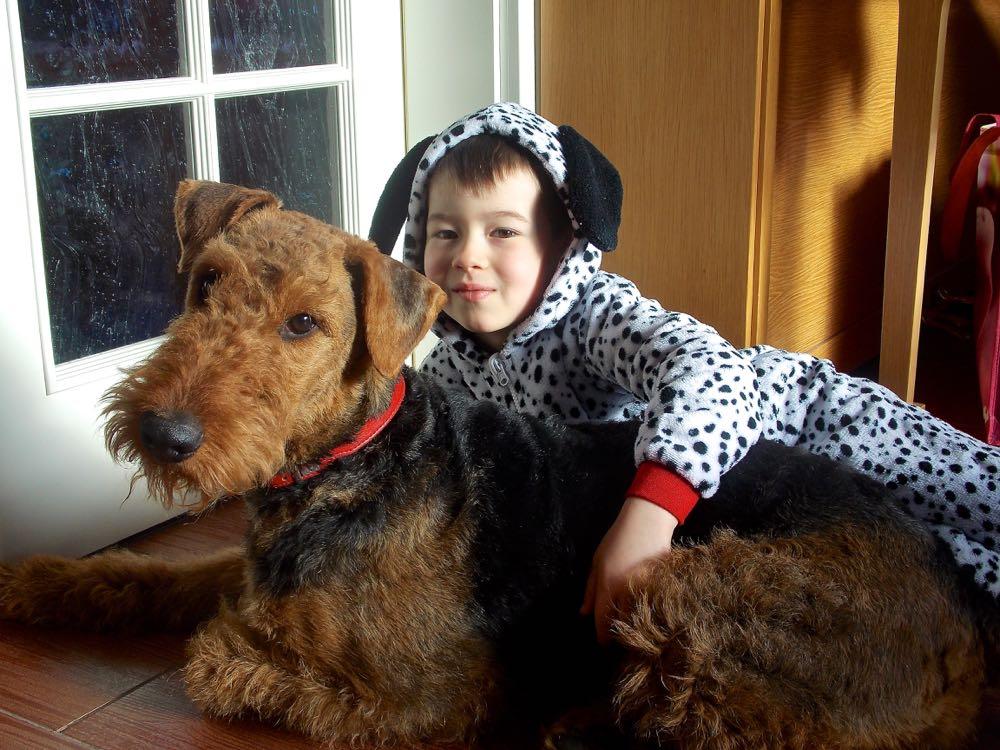 ANDRE UND ZAKIRA VOM DIPPOLD - das Geheimnis ist gelüftet, der 2. Hund war Andre als Dalmatiner zum Fasching!