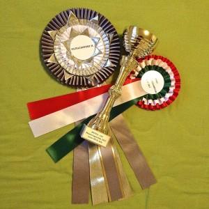 Szaffi's Auszeichnungen in Ungarn.