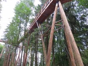 Ein Riesenbauwerk - ein Baumwipfelpfad zum Aussichtspunkt an der Saarschleife bei Metlach.
