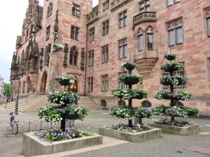 Wir schauen uns weiter in der sehr schönen Innenstadt Saarbrücken um - hier das Rathaus.